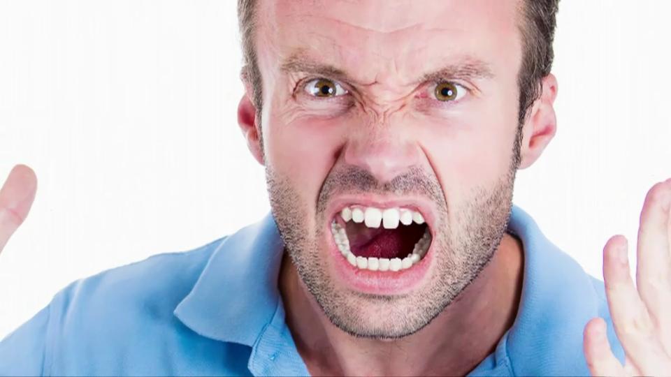 Wut  - eine Emotion bestimmt unsere Gesellschaft