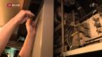 Video «FOKUS: Techniker und Ingenieure gesucht» abspielen