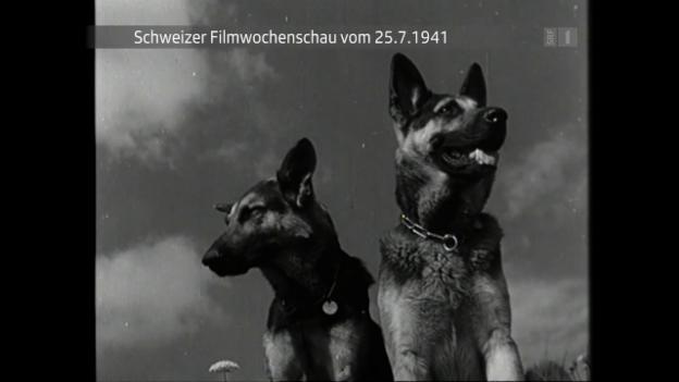 Video «Vom 25. Juli 1941» abspielen