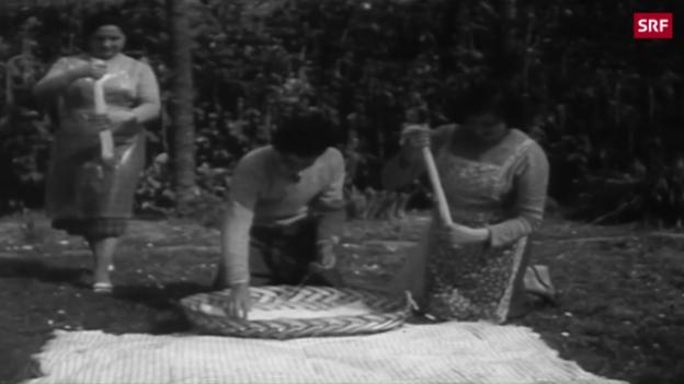 Video «Spaghetti-Ernte im Tessin» abspielen
