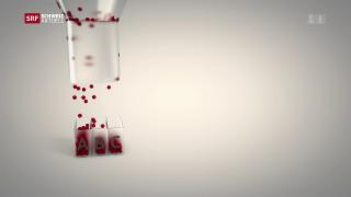 Video «Kritik an Straftäter-Screening» abspielen