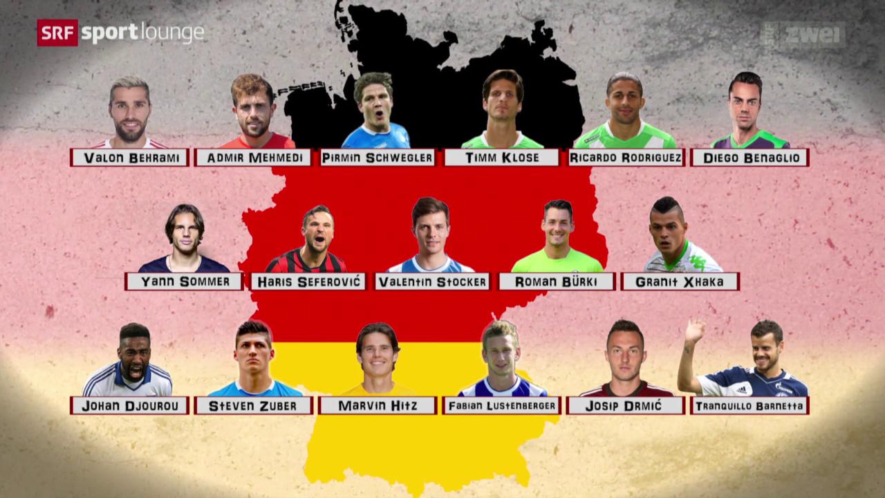 Schweizer Fussballer in der Bundesliga — Chapuisat bis Rodriguez