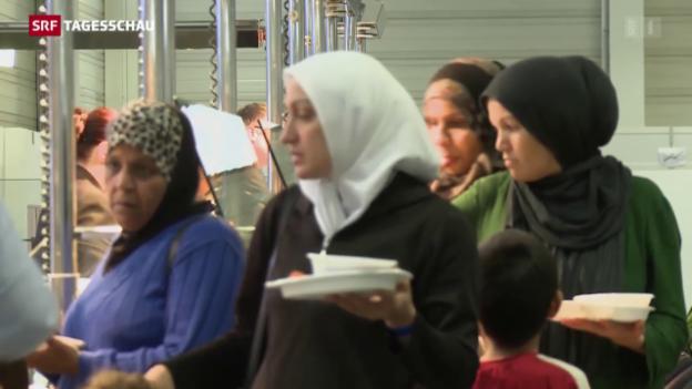 Video «Platznot für Flüchtlinge in Berlin» abspielen