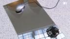 Video «Das Auge der Computermaus» abspielen