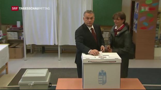 Video «Referendum in Ungarn: Entscheidet die Wahlbeteiligung?» abspielen