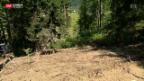 Video «Der Üetliberg rutscht» abspielen