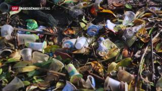 Video «Zwei Mädchen gegen den Müll» abspielen