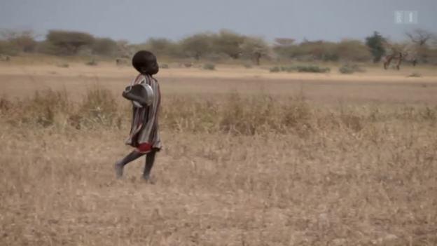 Video «ECO Spezial: Entwicklungshilfe-Milliarden bringen wenig» abspielen