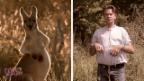 Video «Rob Spence ist perfekt integriert.» abspielen