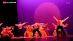 Video «Alvin Ailey begeistert Tanzfans in Zürich» abspielen