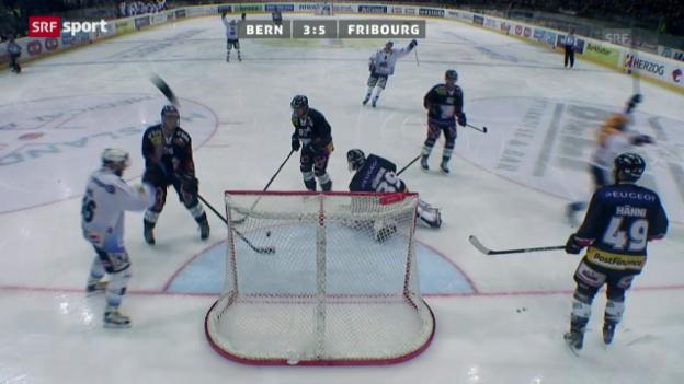 Video «NLA: Bern - Fribourg («sportaktuell»)» abspielen