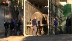 Video «Die Dickhäuter im Zoo Zürich sind umgezogen» abspielen