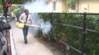 Video «Zika-Alarm in Florida» abspielen
