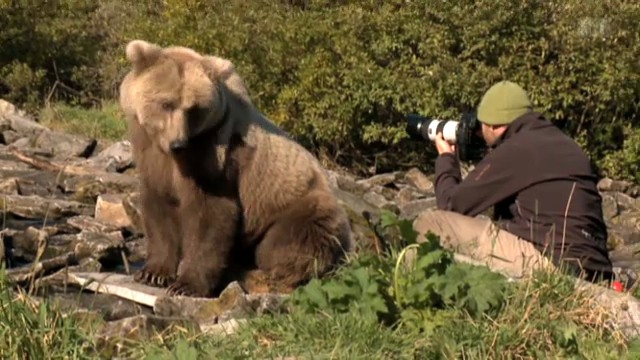 Leben unter Grizzlies