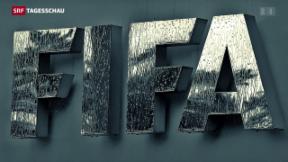 Video «Vor dem FIFA-Kongress» abspielen