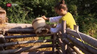 Video «Geissenjagd, Bauernalltag, Familienleben im Mittelalter» abspielen