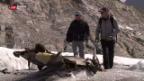 Video «Gauligletscher gibt grosse Wrackteile der «Dakota» frei» abspielen