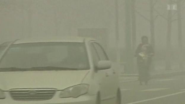 Video «Smog senkt das Geburtsgewicht» abspielen
