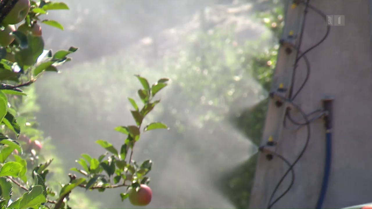 Pestizide: Kritik am Reduktionsplan des Bundes