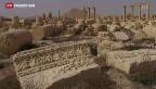 Video «Erneut Kulturerbe durch IS bedroht» abspielen
