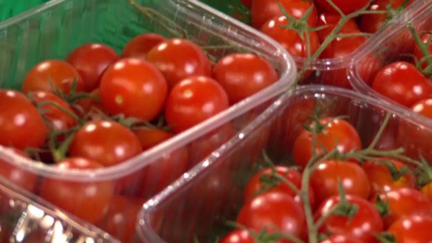 Video «Tomaten aus Konflikt-Gebiet: Detailhändler verschleiern Herkunft» abspielen