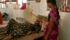 Video «Indien leidet unter Hitzewelle» abspielen