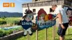 Video «In diesem Haus leben 11 Leandros» abspielen