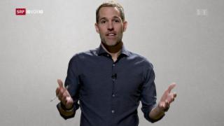 Video «Arthur Honegger erklärt die Midterms» abspielen