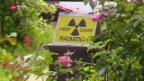 Video «Immer noch Radioaktivität im Tessin» abspielen