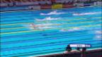Video «Highlights 4x200 m Freistil-Staffel» abspielen