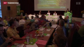 Video «Grüne sagen Nein zu Ecopop» abspielen