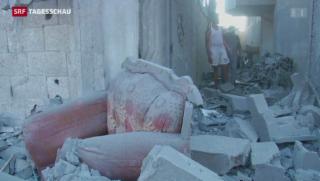 Video «Gaza-Offensive löst internationale Kritik aus» abspielen
