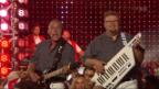 Video «Partyhelden feat. Sängerfreunde mit «Dini Seel ä chli la bambälä»» abspielen
