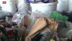 Video «Sind Singles Lebensmittelverschwender?» abspielen