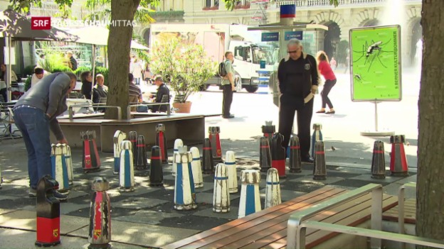 Video «Schweizer Bevölkerung wächst» abspielen