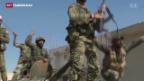 Video «EU fordert Stopp der russischen Angriffe auf Rebellen» abspielen