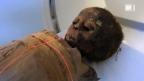 Video «Mumienforschung mit Röntgen-Technologie» abspielen