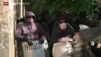 Video «Scharfe Anschuldigungen» abspielen