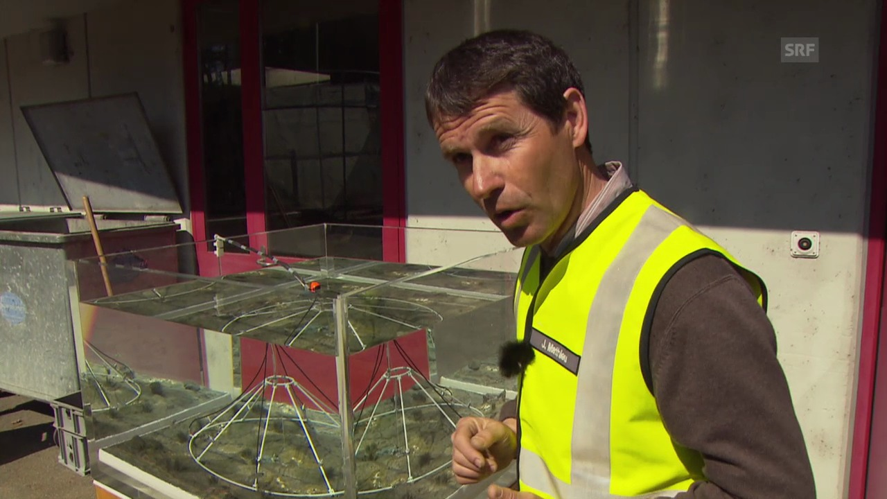 Armasuisse-Experte Jörg Mathieu erklärt das Verfahren (SRF)