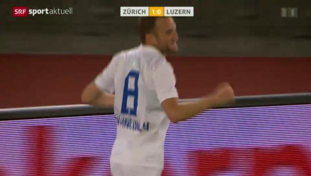 Video «Fussball: Christian Schneuwlys Tor gegen den FCL» abspielen