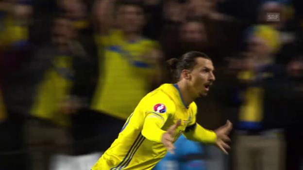 Video «Fussball: Dänemark - Schweden, Freistoss Ibrahimovic» abspielen