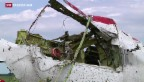 Video «Experten gelangen erstmals zum MH17-Absturzort» abspielen