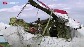 Video «Experten gelangen erstmals zum MH17-Absturzort » abspielen