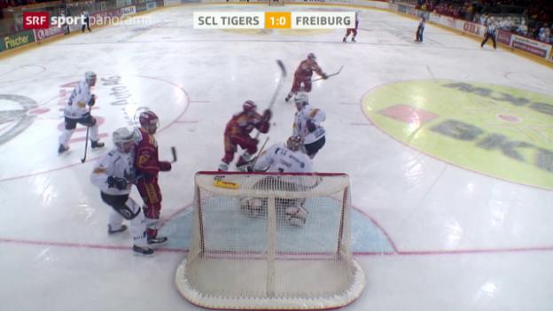 Video «Eishockey: SCL Tigers - Freiburg» abspielen