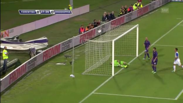 Video «Fussball: Fiorentina - GC («sportaktuell»)» abspielen