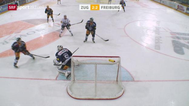 Video «Eishockey: NLA, Zug - Freiburg, kuriose Szene» abspielen
