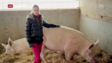 Link öffnet eine Lightbox. Video Fleischlos – Mit oder ohne Fleisch in die Zukunft? abspielen