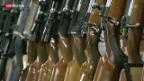 Video «Lasche Waffengesetze» abspielen