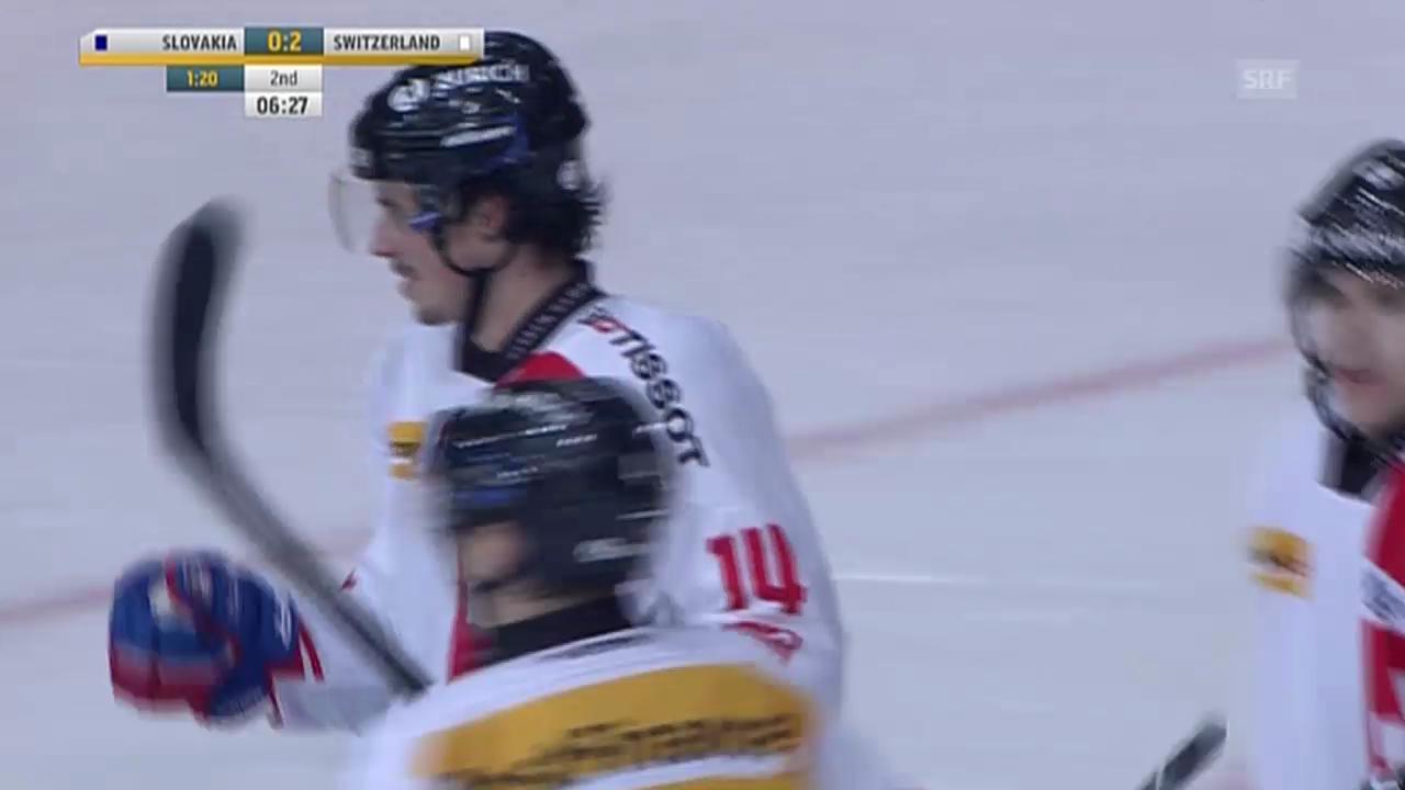 Eishockey: Roman Wicks letztes Nati-Tor