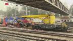 Video «Tödlicher Zugunfall» abspielen